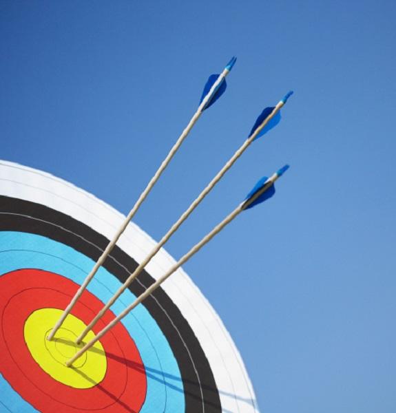 Air Rifles & Archery   Stag 1